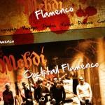 Mehdi Flamenco